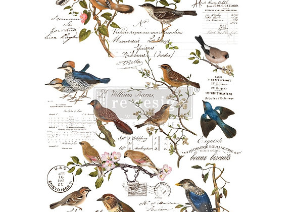 Postal Birds Transfer | Redesign with Prima Furniture Tr