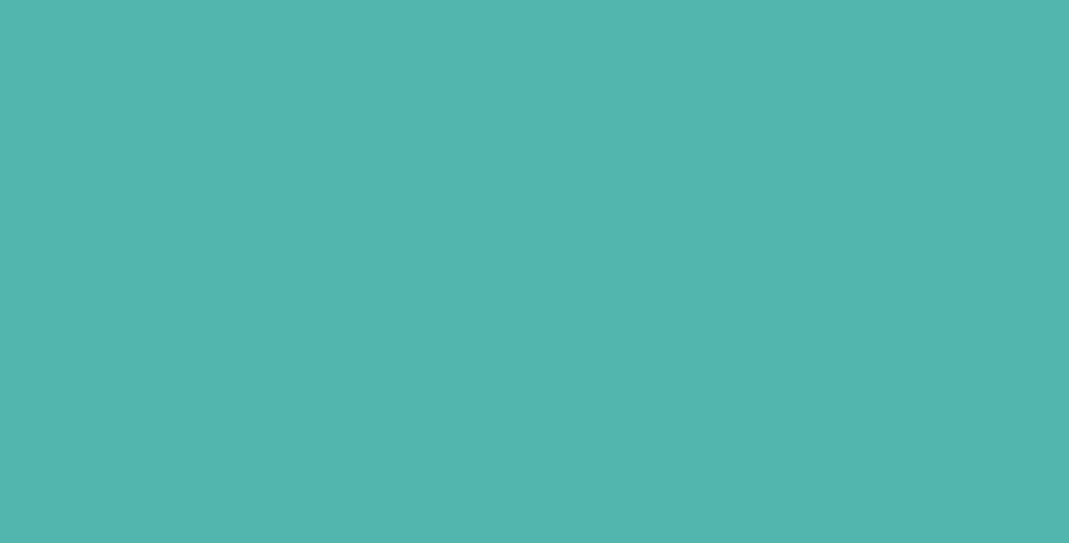 Dixie Belle The Gulf Chalk Mineral Paint | Turquoise Blue Paint