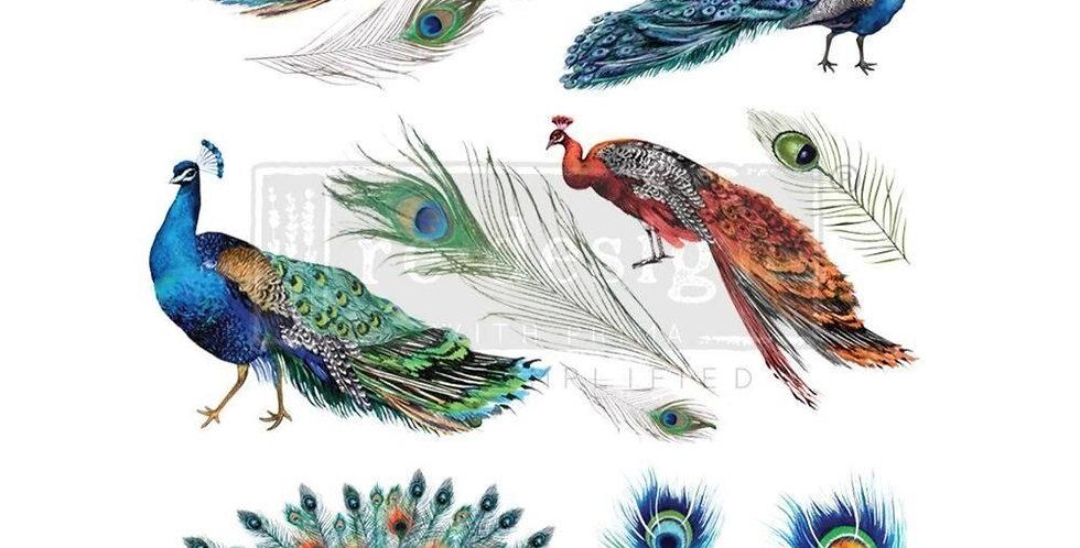 Peacock Dreams Decor Transfer | ReDesign With Prima