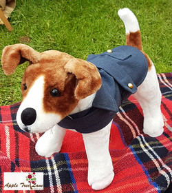 RAF Dog Coat