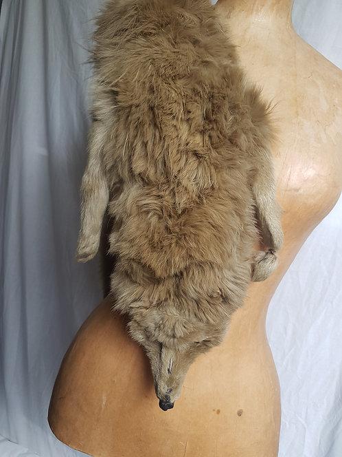 Vintage Fur Stole   (10)