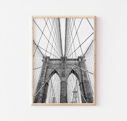 Brooklyn B |  New York
