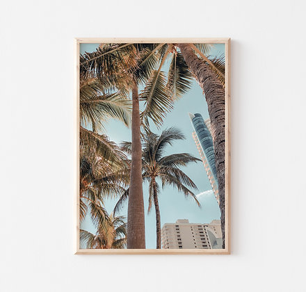 Miami B |  Miami