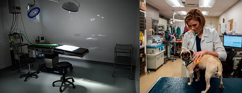 Healthcare-medical-coatings-floors-jofa-