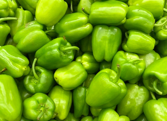 Capsicum, green, each