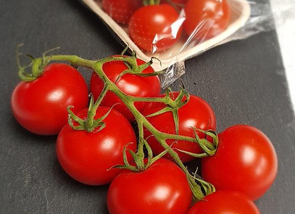 NZ Campari gourmet vine tomatoes, 300g tray