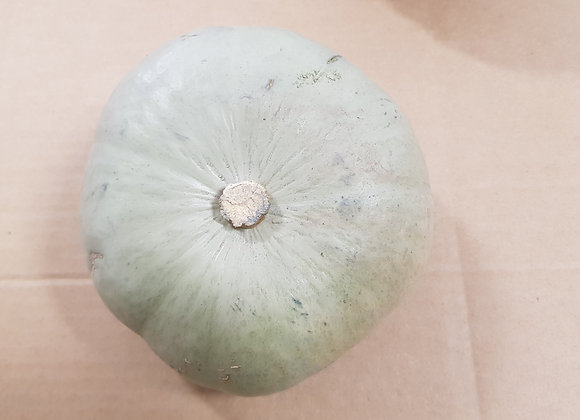 Grey Pumpkin ( small)