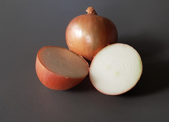 Onion, brown kg