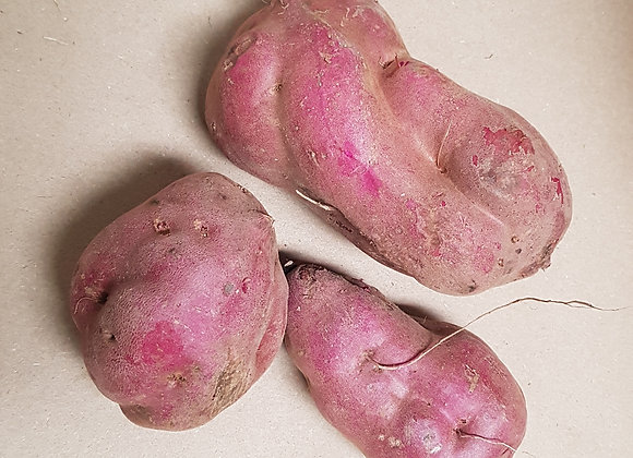Red Kumara, priced kg
