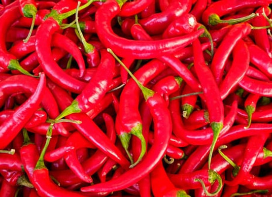 Chilli, red, each