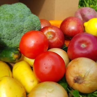 fruit pic for chooice webpage.jpg