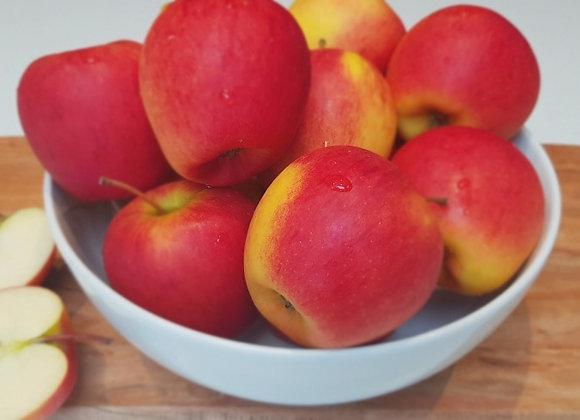 Apples, NZ Braeburn, kg