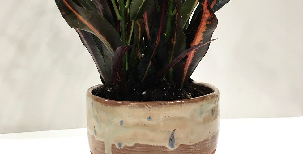 Sand & Cobblestone Planter
