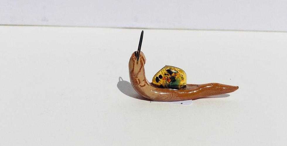 Yellow Snail 1