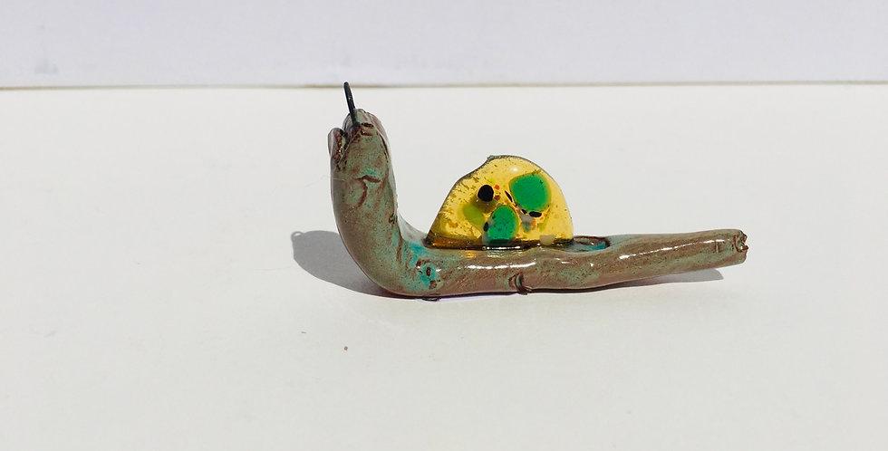 Yellow Snail 2