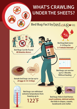Merveilleux Bed Bug Fact Sheet