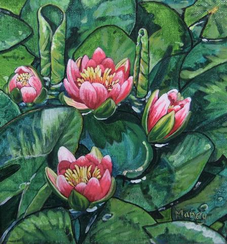 Hawaiian Waterlilies #5