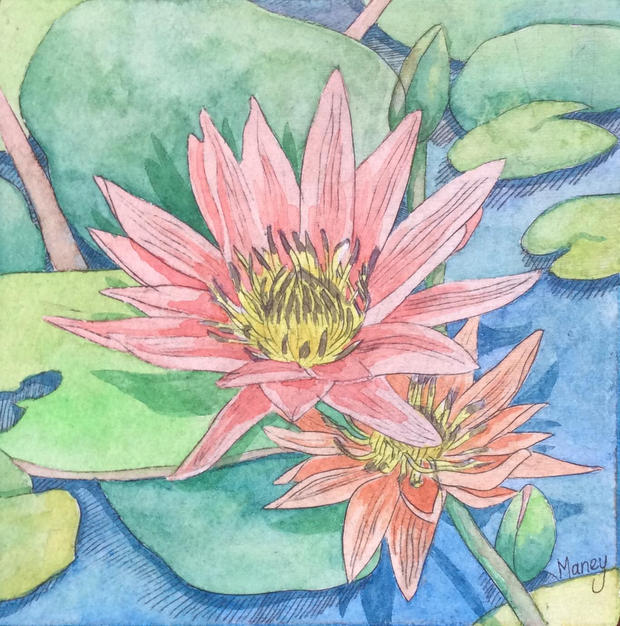 Etched Water Lily 3