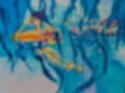 70 Aqua Fun 2018.jpeg