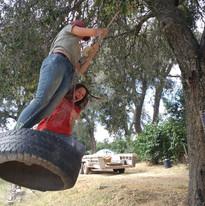 Fun on the Tire Swing