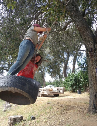 Fun on the Tire Swing