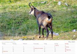 Kalender 20215