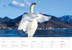 Kalender 20212