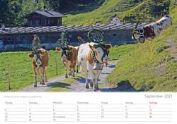 Kalender 20219