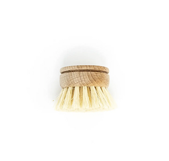 Beechwood Dish Brush Replacement Head by The Waste Less Shop