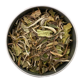 """Coconut Dream"" Organic White Tea L(30 serving tin)"