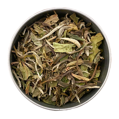 """Coconut Dream"" Organic White Tea L(30 serving tin)"