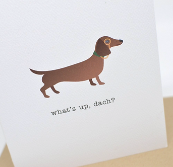 What's Up, Dach? by Pennie Post