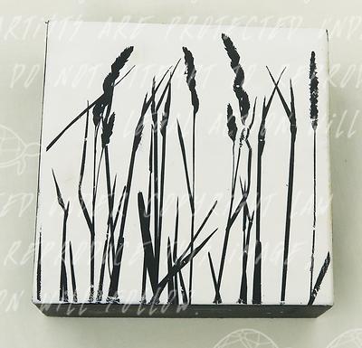 Wild Grass by Shannon Amidon