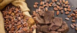 Aalst Chocolate Edited-578_edited.jpg