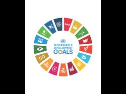 UN SDGs Goals