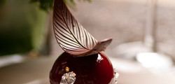 Aalst Chocolate Edited-729_edited_edited.jpg