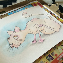 Instagram - Here's a lil flashback watercolor of my dream pet, a hairless cat! A