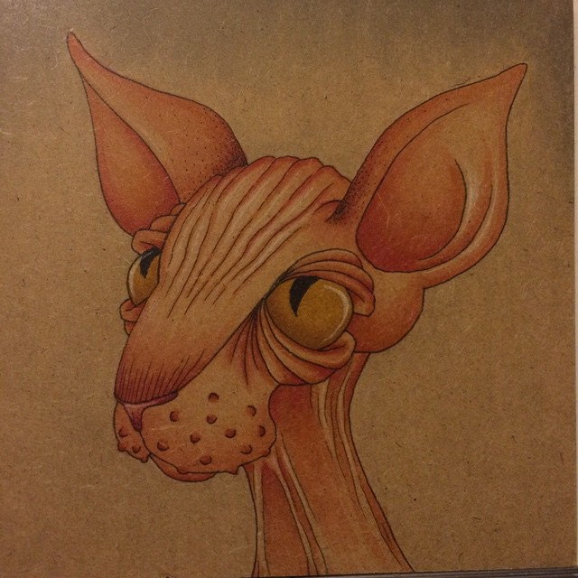 Instagram - Second #sphynx is just about done.jpg
