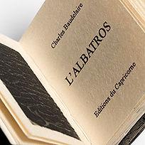 L_ALBATROS_09.jpg