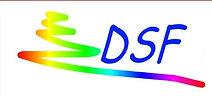 DSF_DOCENTISENZAFRONTIERE_logo_3.jpg
