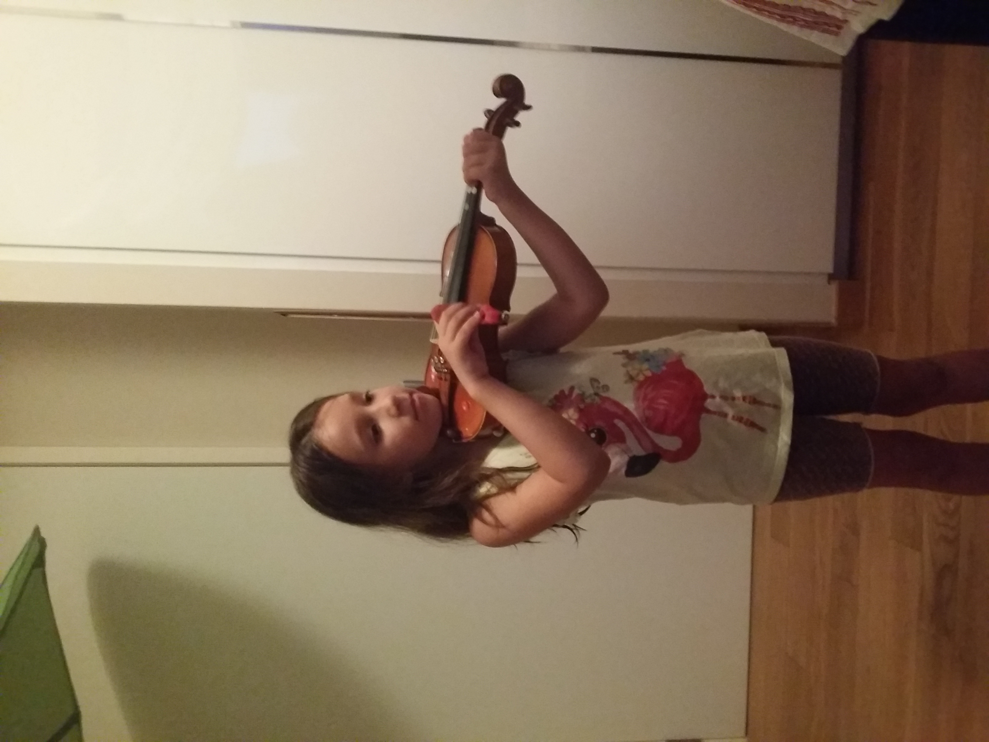 Violin Lessons For Kids