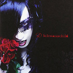 S_Schwarzschild_normal.jpg