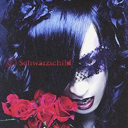S_Schwarzschild_limited.jpg