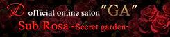 Salon_GA_01.jpg
