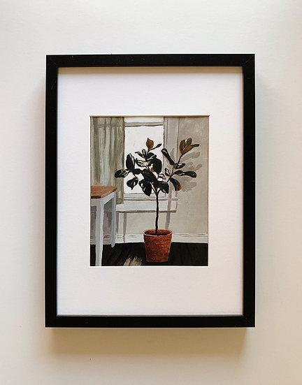 Fig Tree Print