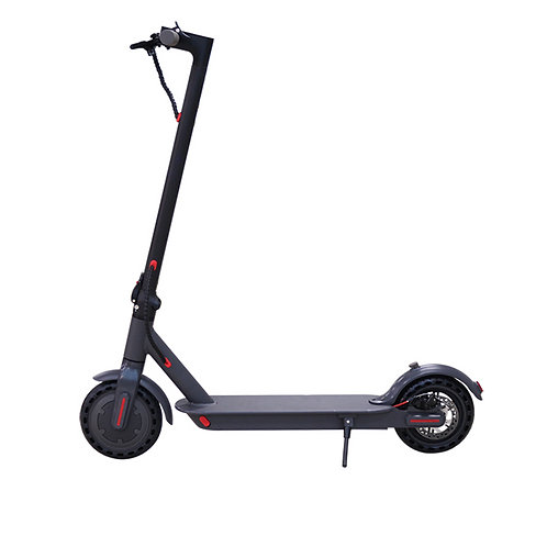 electric scooter - electriders - elnear l85
