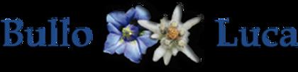 logo fiorista.png