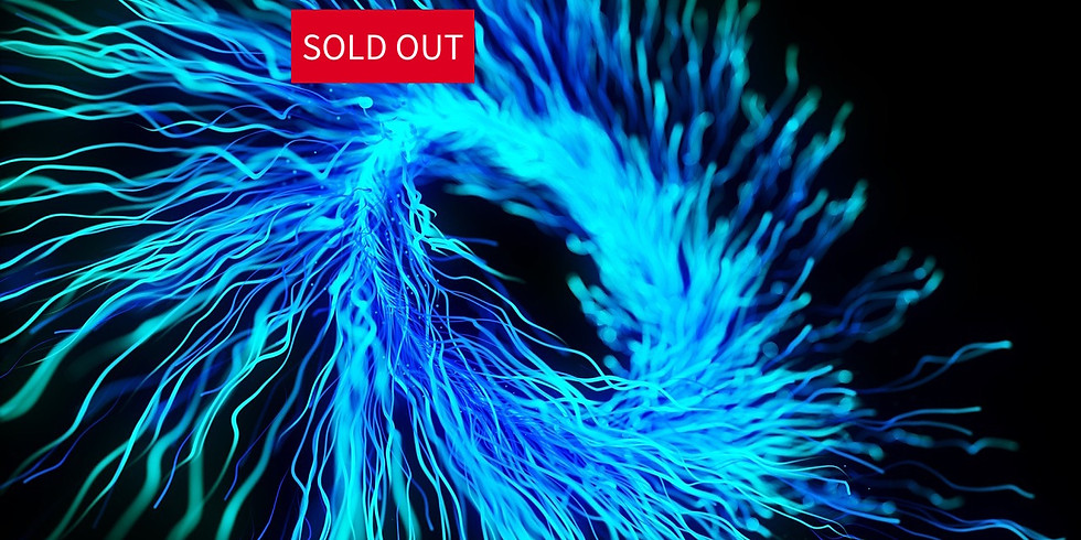 FIBERS: SOLD OUT