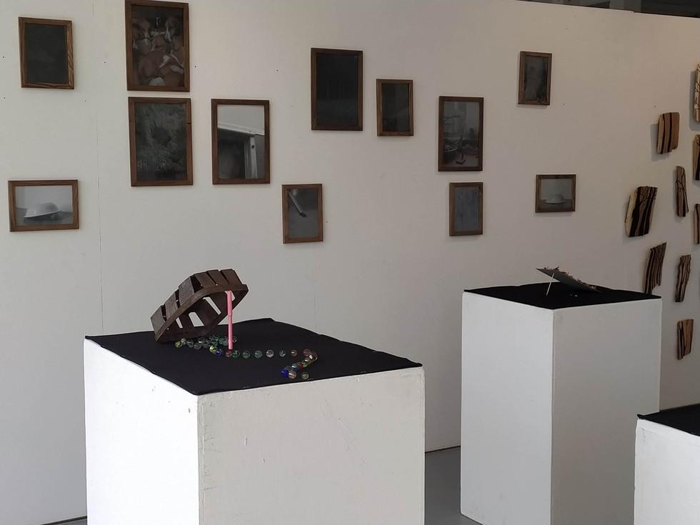 Manuel du piégeur, Installation, La Source, September 2020.