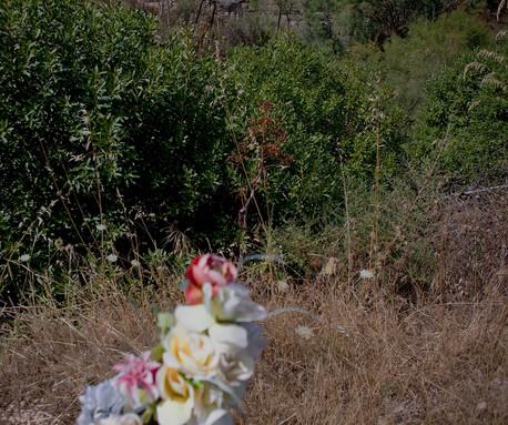 Vanessa a eté tuée par son ami qui, aprés avoir caché le corps, a fait semblant pendant deux jours de la chercher avec ses parents